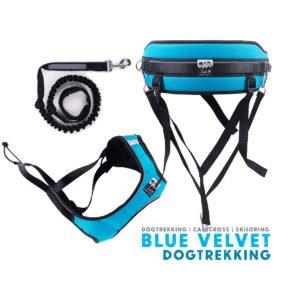 zestaw-dogtreking-blue-velvet