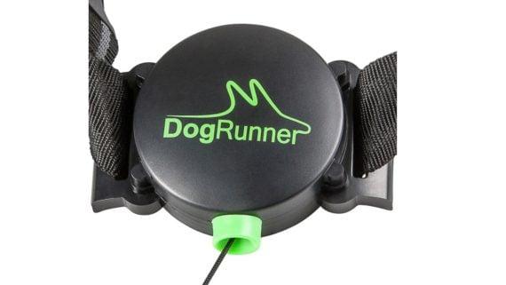 dogrunner_web_3-1280×720