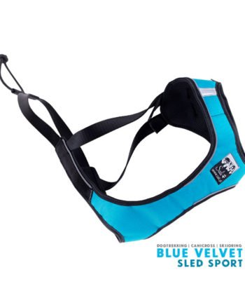 sport_sled_sali_blue_velvet