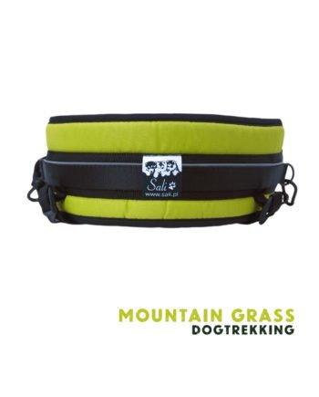 pas_slim_mountain_grass_04