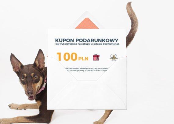 kupon_100-02