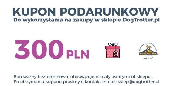 kupon_300-01