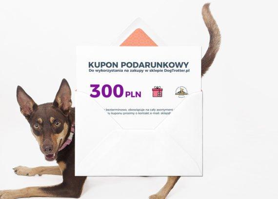 kupon_300-02