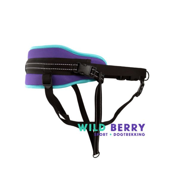 Pas_Bold_WildBerry_fiolet_mieta_02