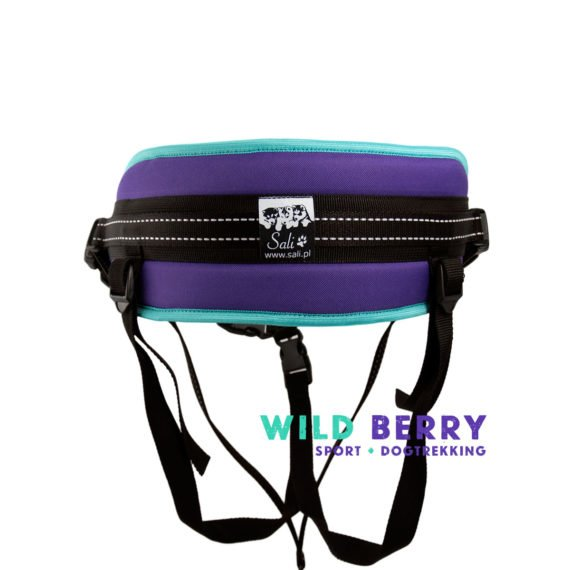 Pas_Bold_WildBerry_fiolet_mieta_03